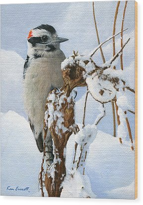 Downy Woodpecker  Wood Print by Ken Everett