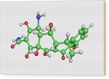 Doxycycline Antibiotic Molecule Wood Print by Dr Tim Evans