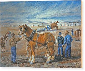Draft Horse Pull Wood Print by Dawn Senior-Trask