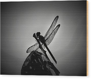 Dragon Fly Wood Print by William Jones