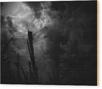 Dragon Noir Wood Print