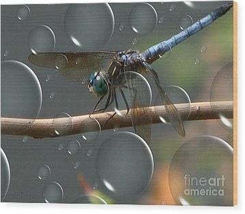 Wood Print featuring the photograph Dragonfly Opera by Roxy Riou