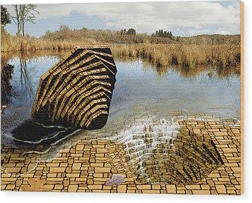 Drain - Mendon Ponds Wood Print