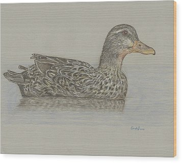 Drake Duck Wood Print by Cynthia  Lanka