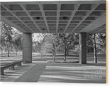 Drake University Harmon Fine Arts Center Wood Print by University Icons