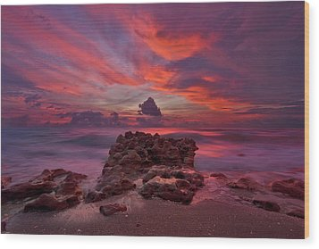Dramatic Sunrise Over Coral Cove Beach In Jupiter Florida Wood Print by Justin Kelefas