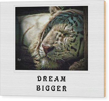 Wood Print featuring the photograph Dream Bigger by Traci Cottingham
