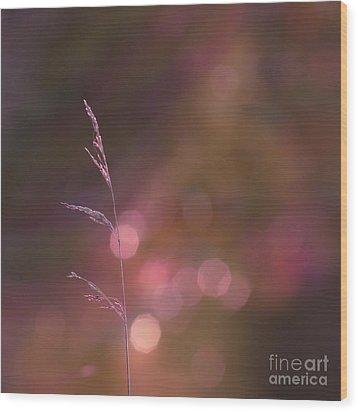 Dream It... Believe It Wood Print by Aimelle