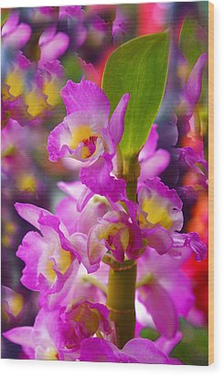 Wood Print featuring the photograph Dream Of Spring by Byron Varvarigos