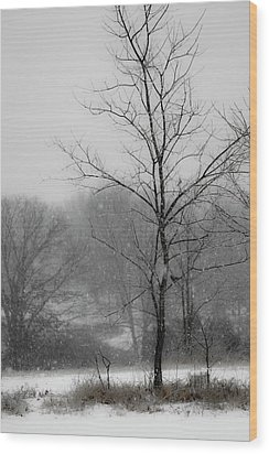 Dream Of Winter Wood Print