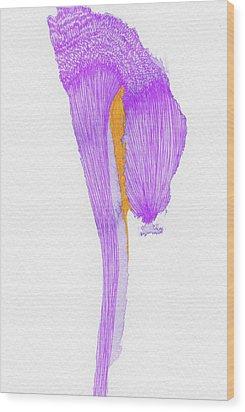 Dream - #ss16dw058 Wood Print by Satomi Sugimoto