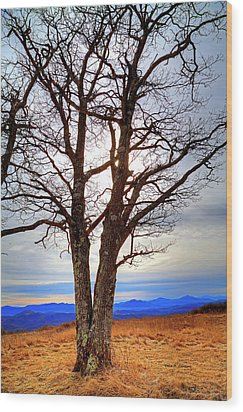 Dreamcatcher Wood Print by Dale R Carlson