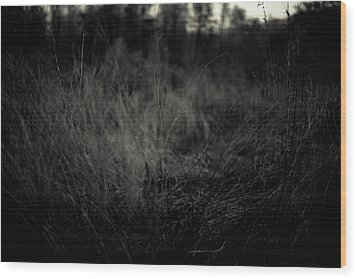 Wood Print featuring the photograph Dreaming In by Shane Holsclaw