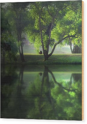 Dreamy Afternoon Wood Print by Cecil Fuselier