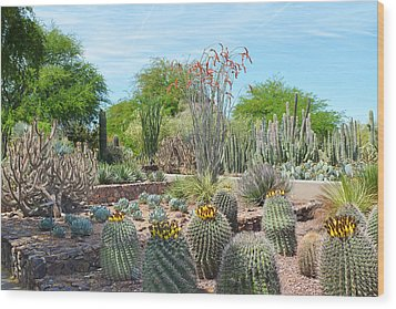 Dreamy Desert Cactus Wood Print