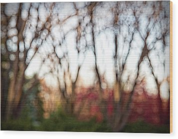 Wood Print featuring the photograph Dreamy Fall Colors by Susan Stone