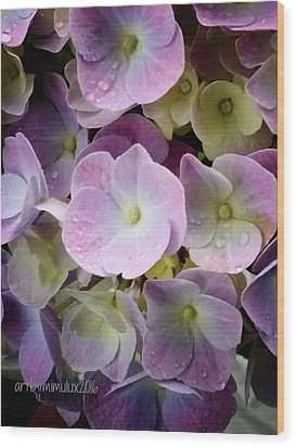 Wood Print featuring the photograph Dreamy Hydrangea by Mimulux patricia no No