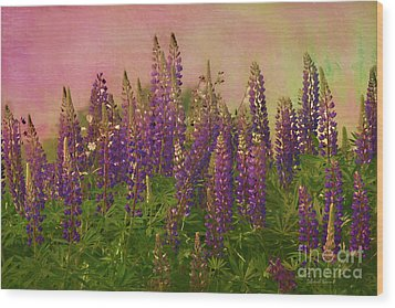 Dreamy Lupin Wood Print by Deborah Benoit