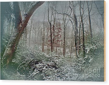Dreamy Snow Wood Print