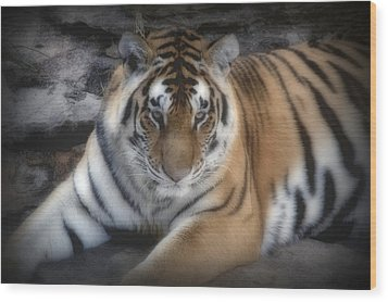 Dreamy Tiger Wood Print by Sandy Keeton