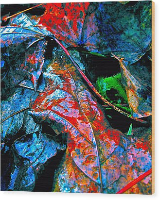 Drenched In Color Wood Print by Gwyn Newcombe
