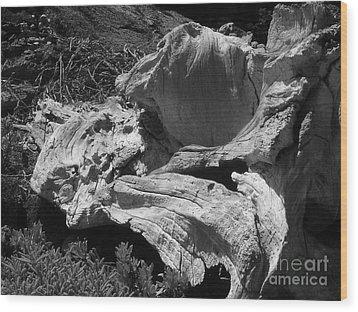 Drift Wood Wood Print by Chad Natti