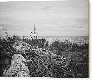 Wood Print featuring the photograph Drift Wood by Karen Stahlros
