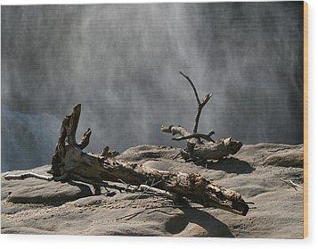 Driftwood Wood Print by Andrei Shliakhau