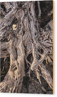 Driftwood Close-up Wood Print by Steven Ainsworth