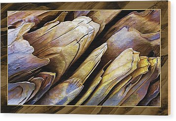 Driftwood Edges Wood Print by ABeautifulSky Photography