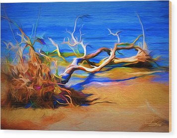 Driftwood Wood Print by Ludwig Keck
