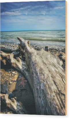 Driftwood On Beach - Grant Park - Lake Michigan Shoreline Wood Print by Jennifer Rondinelli Reilly - Fine Art Photography