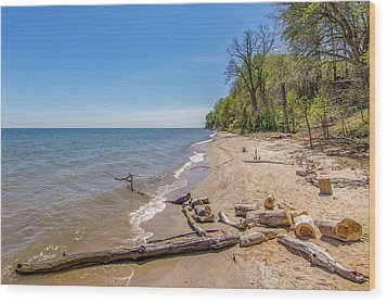 Wood Print featuring the photograph Driftwood On The Beach by Charles Kraus
