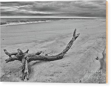 Driftwood On The Beach In Black And White Wood Print by Paul Ward