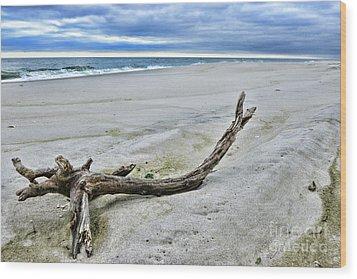 Driftwood On The Beach Wood Print by Paul Ward