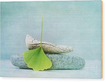 Driftwood Stones And A Gingko Leaf Wood Print by Priska Wettstein