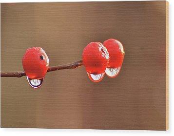 Droplets Wood Print by Nancy Landry