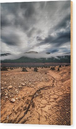 Wood Print featuring the photograph Drought by Ryan Manuel