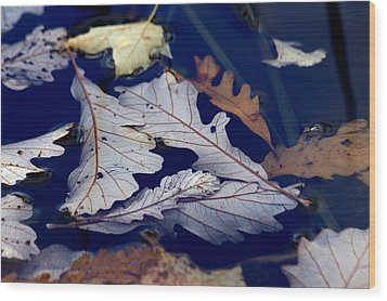 Wood Print featuring the photograph Drowning In Indigo by Doris Potter