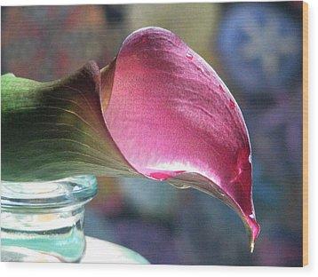 Drowsy Calla Lily Wood Print by Angela Davies