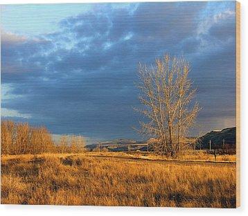 Drumheller Valley Wood Print by Jim Justinick