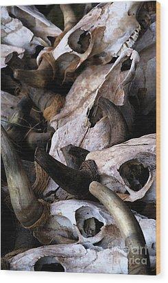 Dry As Bones Wood Print by Linda Shafer