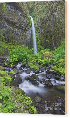 Dry Creek Falls Wood Print