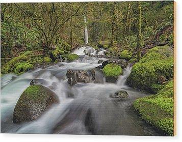 Dry Creek Falls In Springtime Wood Print by David Gn