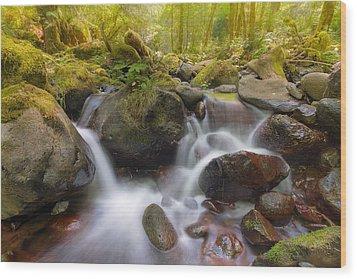 Dry Creek II Wood Print by David Gn