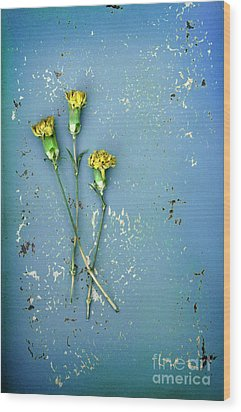 Wood Print featuring the photograph Dry Flowers On Blue by Jill Battaglia