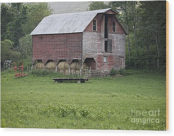 Dry Fork Red Wood Print by Randy Bodkins