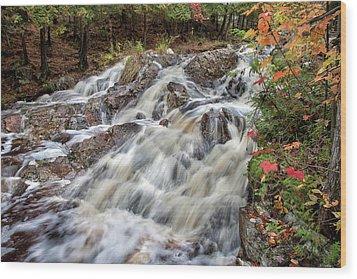 Duchesnay Falls Wood Print by Brian Boudreau