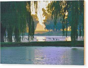 Duck Pond At Dawn Wood Print by Bill Cannon