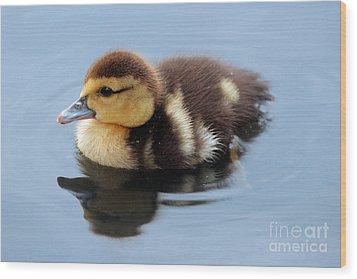 Duckling Wood Print by Jeannie Burleson
